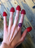 Raspberry hoops